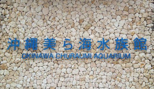 ジンベエザメに興奮!念願の「沖縄美ら海水族館」に行ってきました!