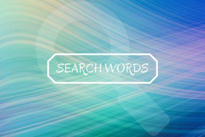 どんな検索ワードで訪れたのかをチェックすると記事の質の改善につながる
