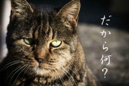 上京後最大のカルチャーショックは、同意を表す「だから」が通じなかったこと。